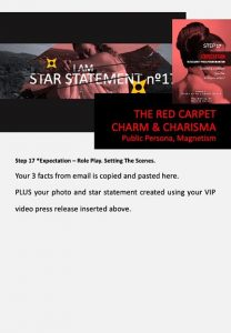 stars and heroes, profiling of character, vip report, step 17
