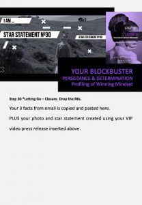 stars and heroes, profiling of character, vip report, step 30